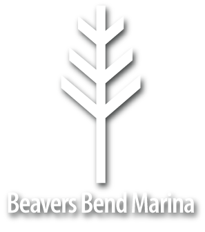 Beavers Bend Marina by Topside Marinas live well image